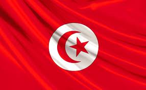 Tunisie: Le PartiPirate Tunisien officiellement reconnu et la Tunisie  instaure la « Journée nationale de la cyberliberté »